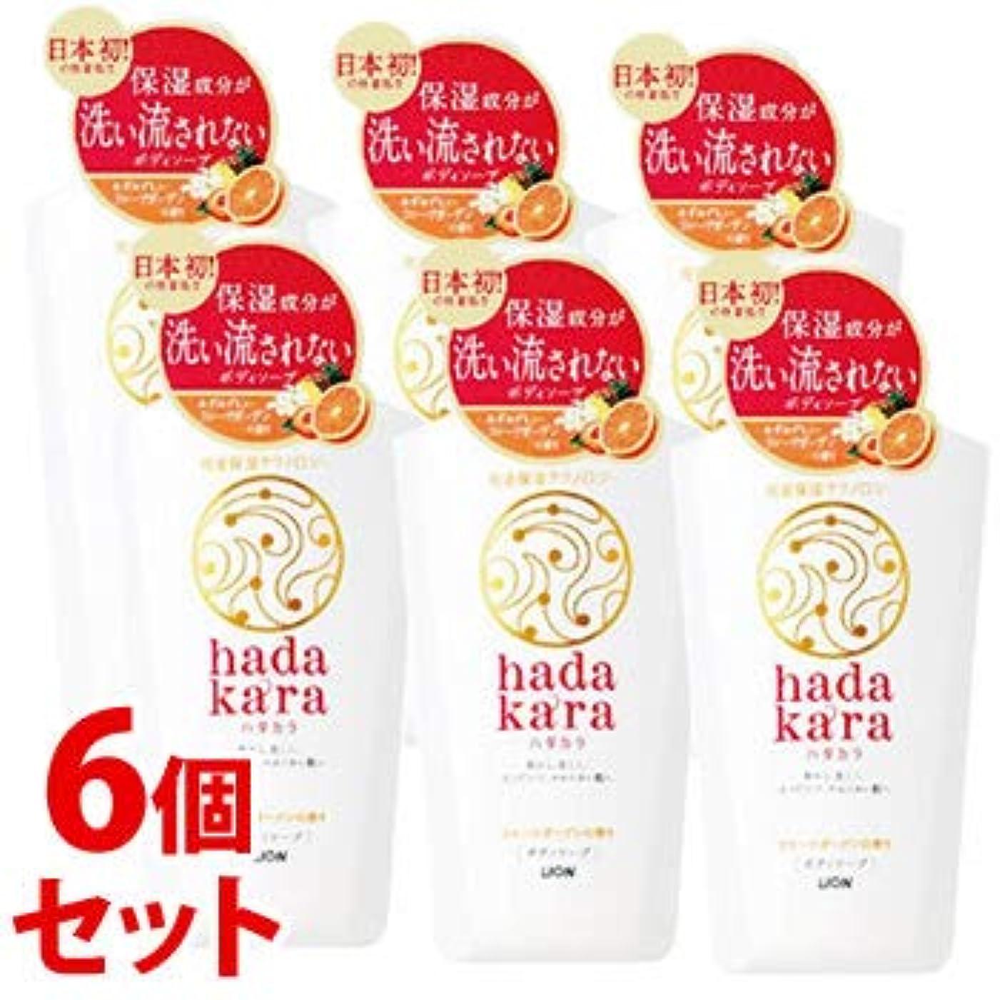 《セット販売》 ライオン ハダカラ hadakara ボディソープ フルーツガーデンの香り 本体 (500mL)×6個セット