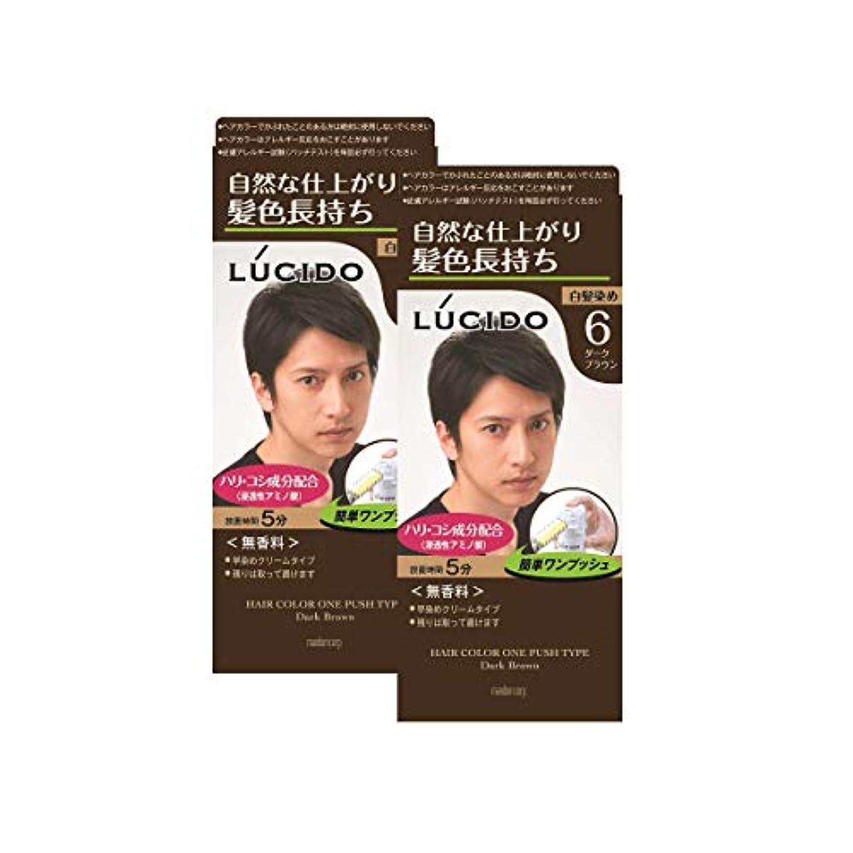 【まとめ買い】ルシード(LUCIDO)ワンプッシュケアカラー ダークブラウン 2個パック メンズ用 無香料 白髪染め ショートヘア約4回分