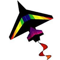 4ft 2D Black Rainbow Jet Kite - Easy Flyer and Ready to fly! by New Tech Kites [並行輸入品]
