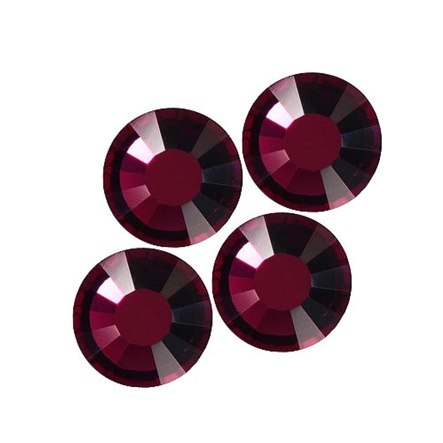 リーダーシップ忍耐植木バイナル DIAMOND RHINESTONE アメジストSS30 360粒 ST-SS30-AME-5GH