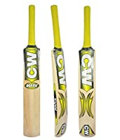 C & W CWジュニア男の子S Cricket Bat In Kashmir Willowマークサイズ2号(Ideal for 3–4Years子)