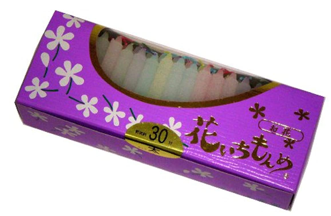 大聖堂マエストロねばねば佐藤油脂のローソク 花いちもんめ カラー 約100本 30分