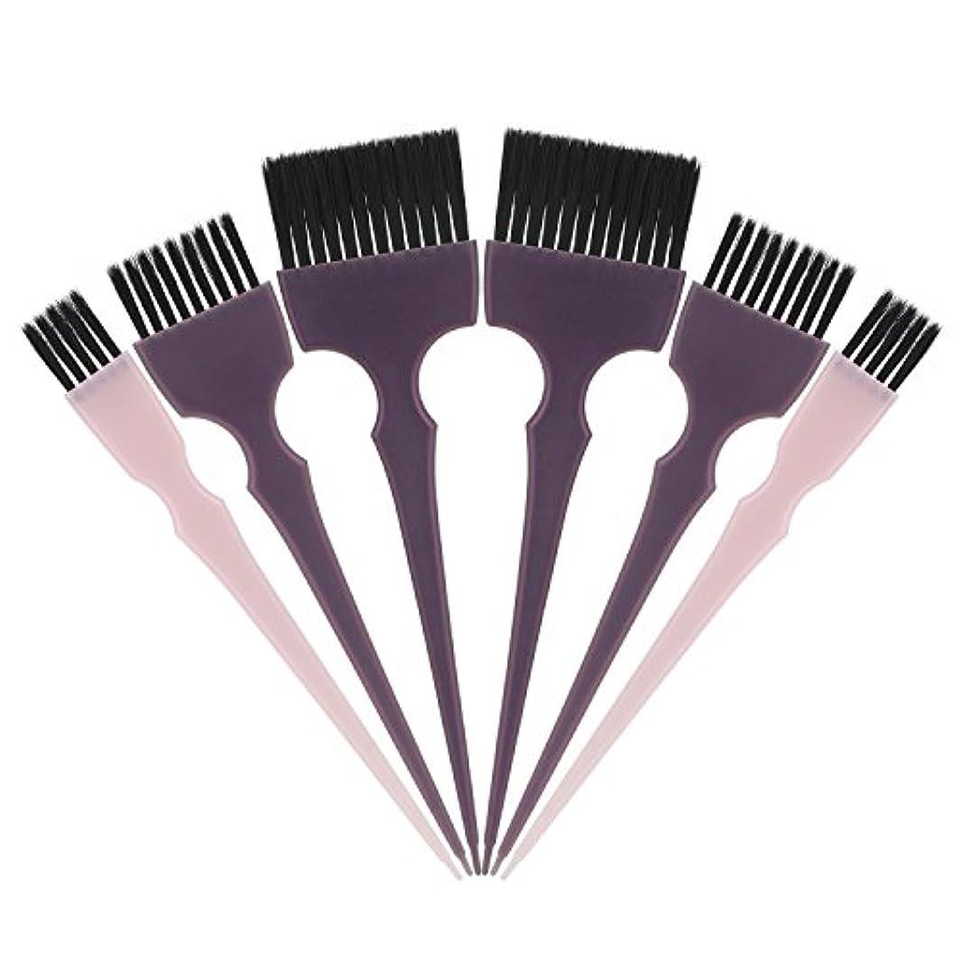 住居エスカレート嵐Segbeauty 髪染めのブラシ 六本のセット サロンの美髪用 プロのヘアカラーリング用