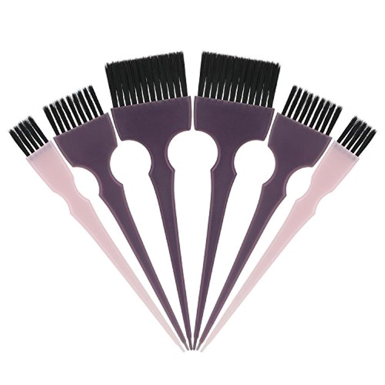 摂動マーチャンダイザーギネスSegbeauty 髪染めのブラシ 六本のセット サロンの美髪用 プロのヘアカラーリング用