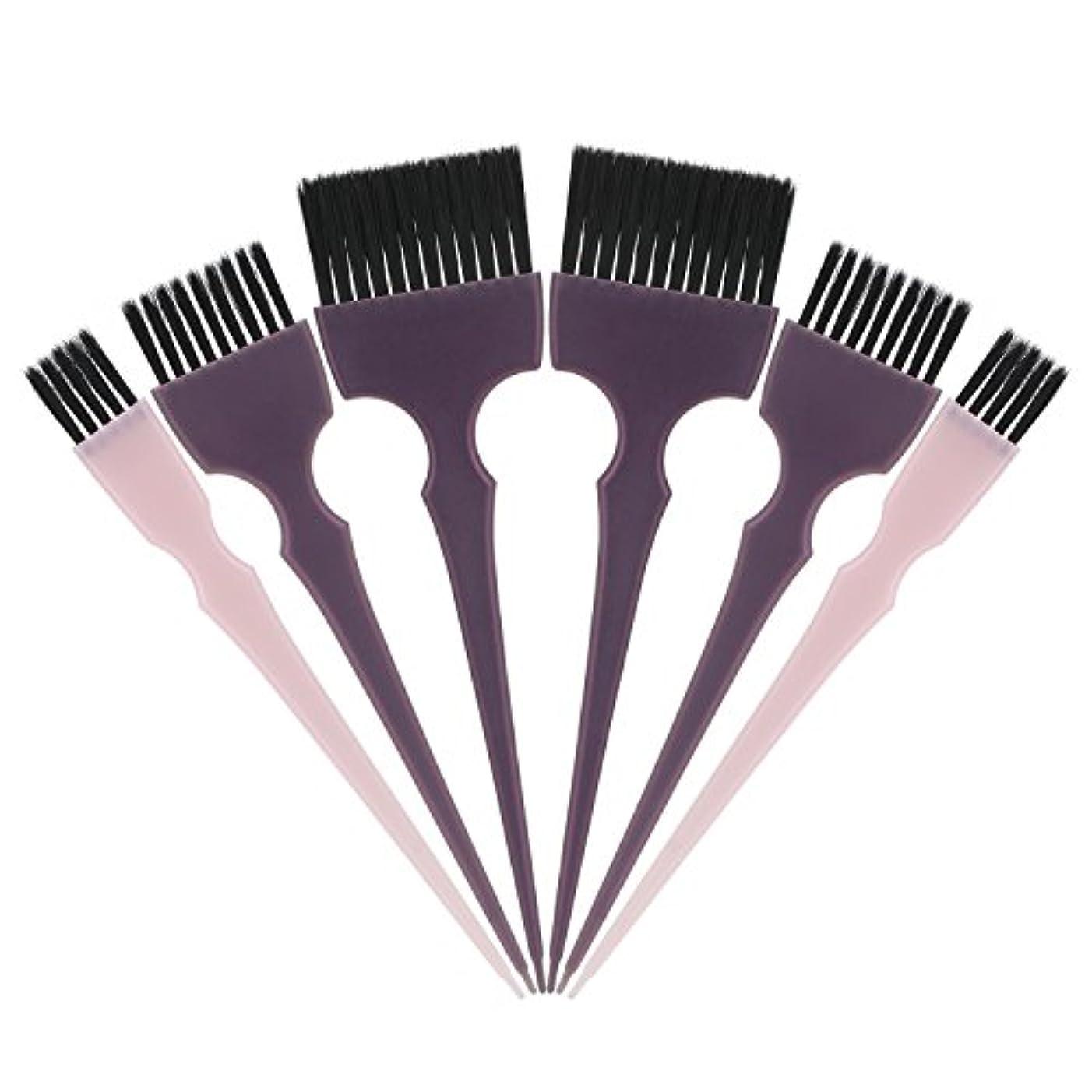 鎮静剤はがきレディSegbeauty 髪染めのブラシ 六本のセット サロンの美髪用 プロのヘアカラーリング用