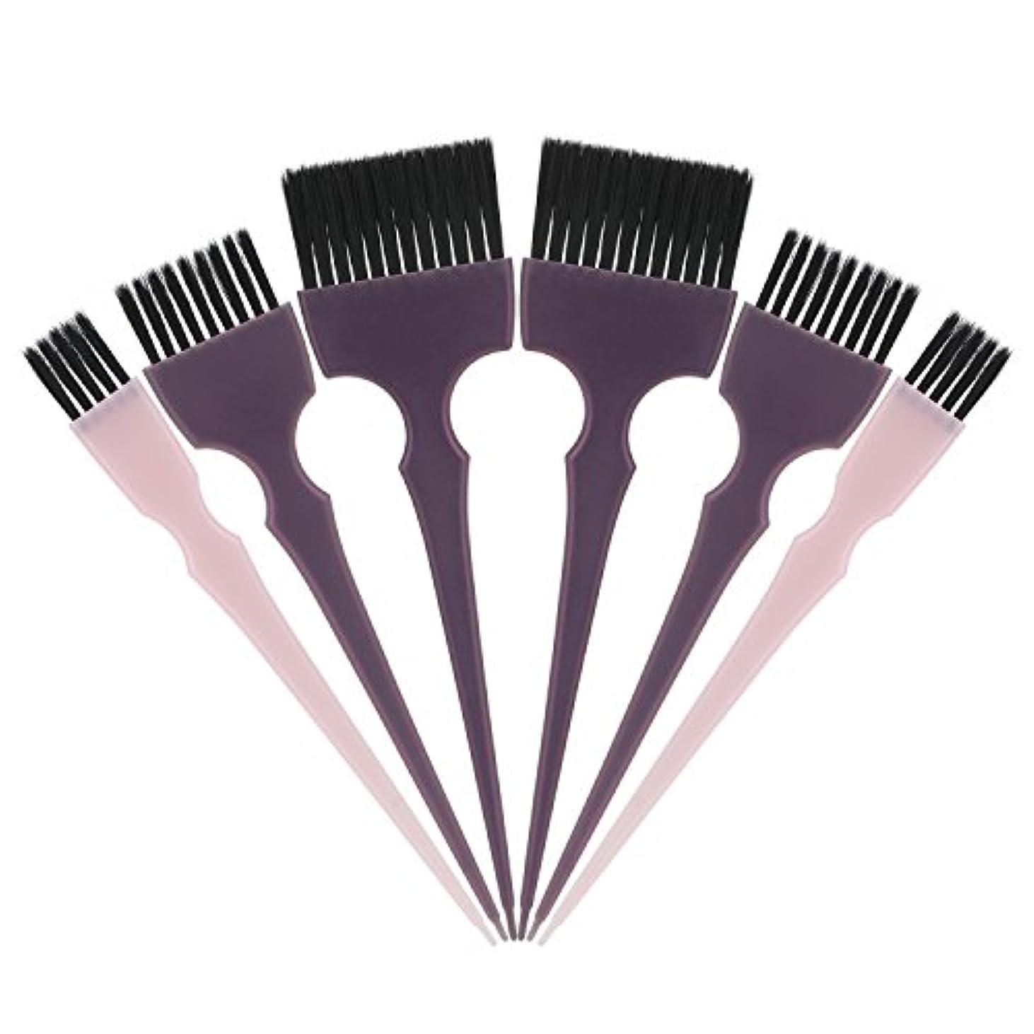 薄汚いファッションカトリック教徒Segbeauty 髪染めのブラシ 六本のセット サロンの美髪用 プロのヘアカラーリング用