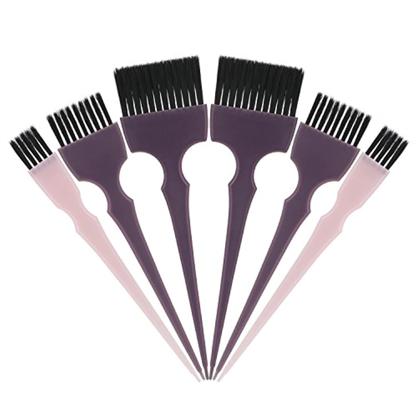 バンドルに負ける彫刻家Segbeauty 髪染めのブラシ 六本のセット サロンの美髪用 プロのヘアカラーリング用