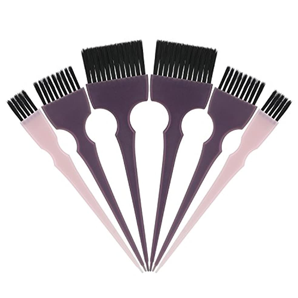 山岳逃れる指定するSegbeauty 髪染めのブラシ 六本のセット サロンの美髪用 プロのヘアカラーリング用