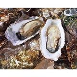牡蠣(かき) 岡山虫明産 殻付き 約100個 (ID-10)