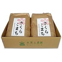 【美白無洗米】 秋田県産 農家直送 特別栽培米 あきたこまち 10kg(5kg×2袋)平成30年産 古代米付き