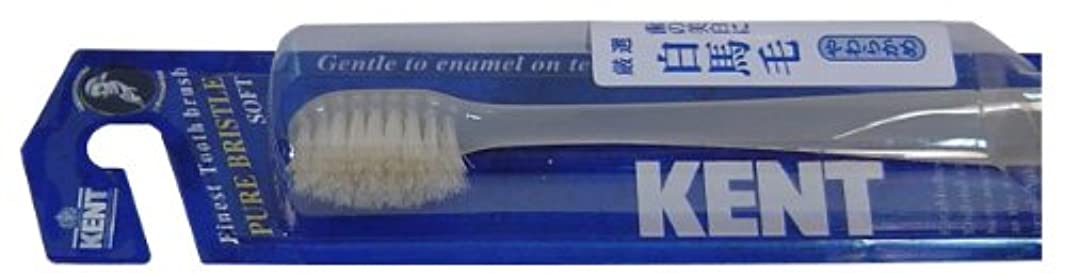 キロメートルバクテリアヒゲクジラKENT 白馬毛歯ブラシ コンパクトヘッド やわらかめ KNT-1132 ×10個セット