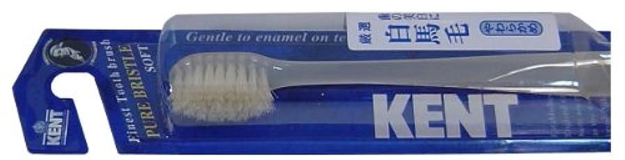 匿名休眠感謝するKENT 白馬毛歯ブラシ コンパクトヘッド やわらかめ KNT-1132 ×5個セット
