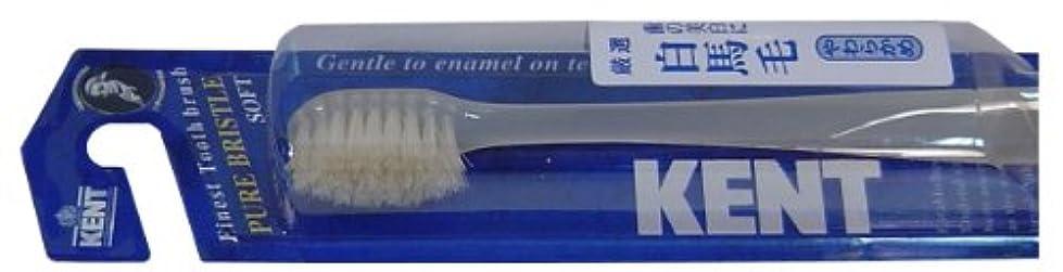 平らなイサカ誇りKENT 白馬毛歯ブラシ コンパクトヘッド やわらかめ KNT-1132 ×3個セット