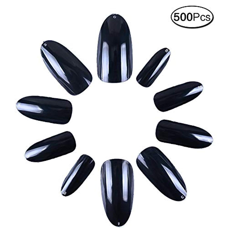 つけ爪 無地 ロング オーバル 500枚入れ 10サイズ 爪にピッタリ 付け爪 練習用 透明