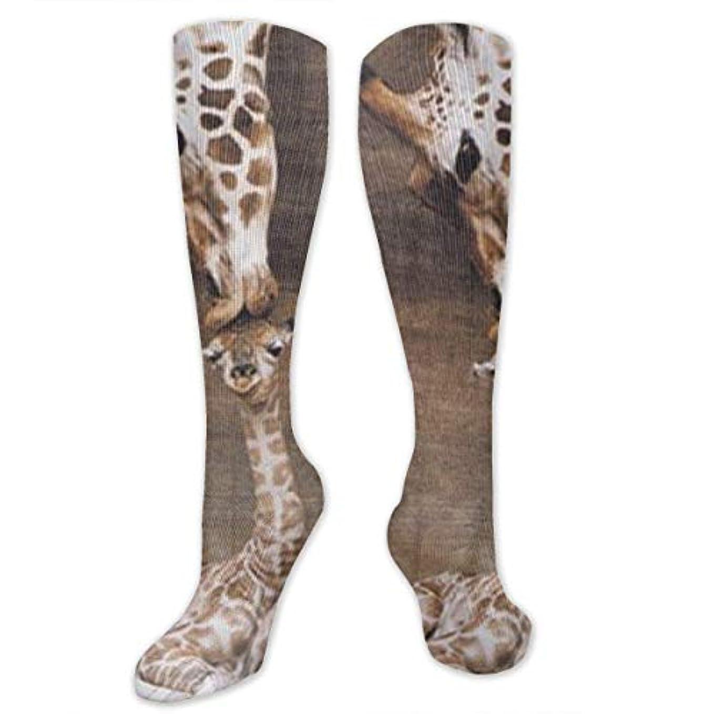 リンス好戦的な雇用者靴下,ストッキング,野生のジョーカー,実際,秋の本質,冬必須,サマーウェア&RBXAA Giraffe, Mother Love Socks Women's Winter Cotton Long Tube Socks Knee...