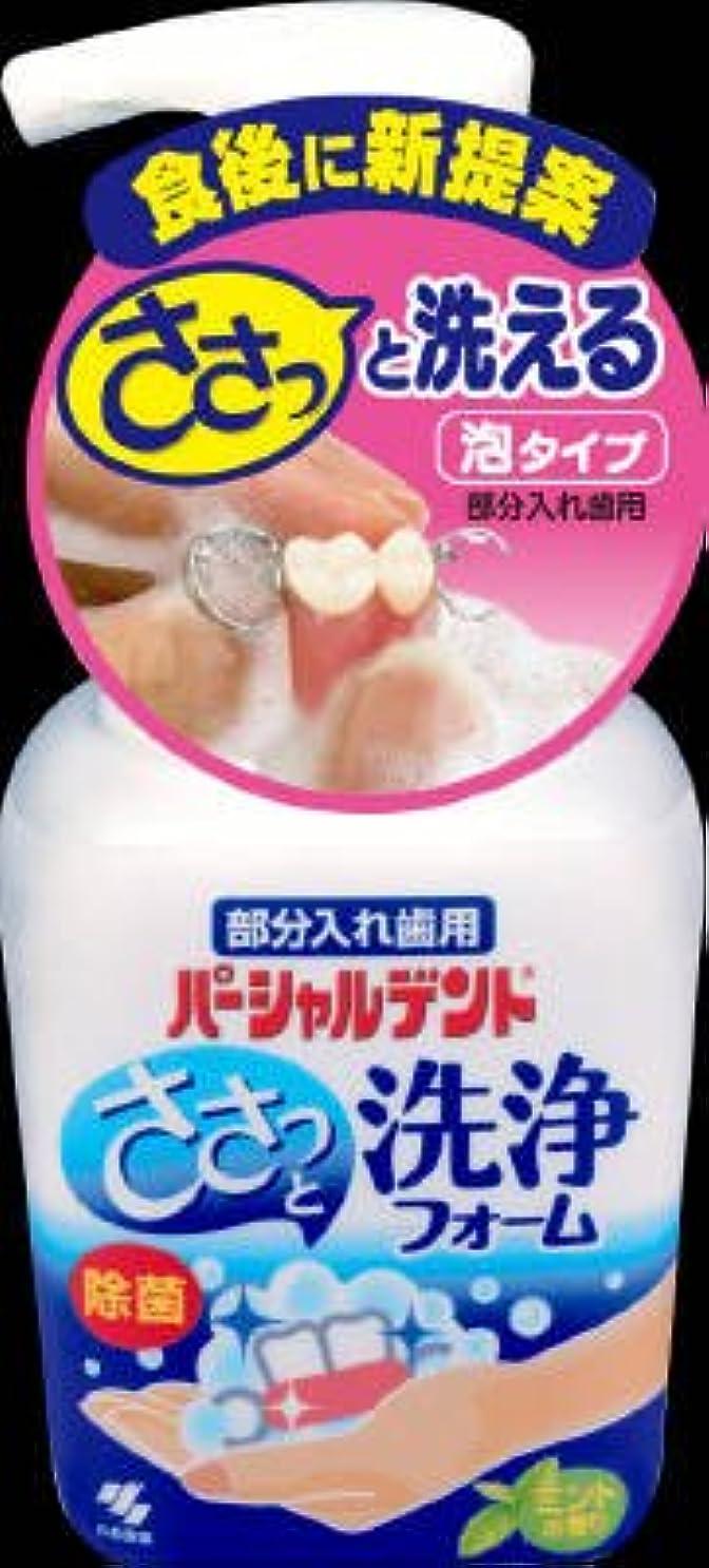 簡単にポケット葡萄小林製薬 パーシャルデント 洗浄フォーム 250ml×24点セット (4987072072837)
