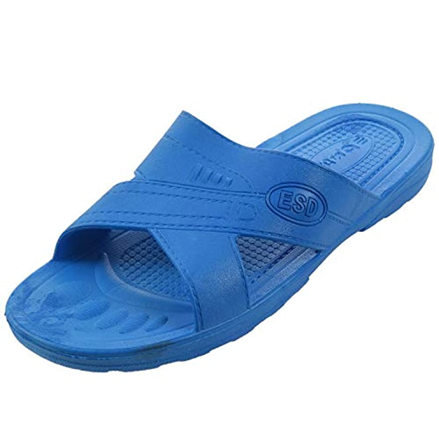 周囲抗生物質現像RETYLY 静電気防止用スリッパ クリーン ダストフリー 保護スリッパ、男性と女性のクリーンな作業靴 柔らかい底46