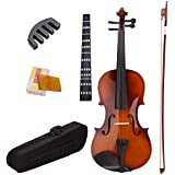 TOOGOO 4/4 Full Size Natural Acoustic Violin Fiddle with Case Bow Rosin Mute Stickers