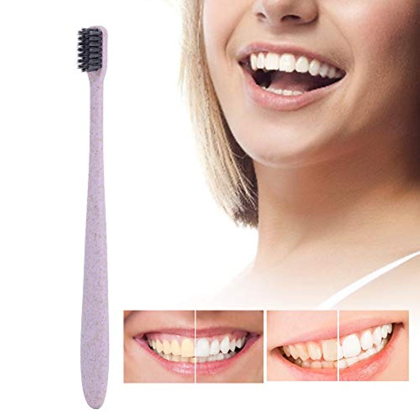 ファームモード湿地10ピース歯ブラシ、柔らかい竹炭ブラシ髪小麦ハンドル歯ブラシ大人の口腔ケア歯ブラシ