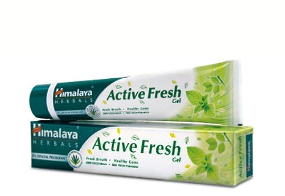 干し草寛容な旅客ヒマラヤ トゥースペイスト アクティブ フレッシュ(歯磨き粉)80g×4本 Himalaya Active Fresh Toothpaste