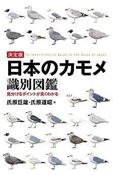 [氏原 巨雄, 氏原 道昭]の決定版 日本のカモメ識別図鑑:見分けるポイントが良くわかる