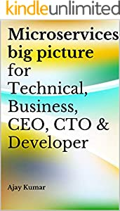 Microservices big picture for Technical, Business, CEO, CTO & Developer (English Edition)