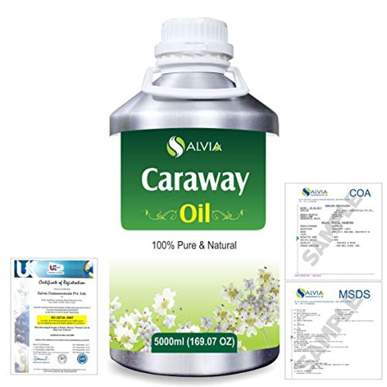 攻撃的お別れ仮装Caraway (Carum carvi) 100% Natural Pure Essential Oil 5000ml/169fl.oz.