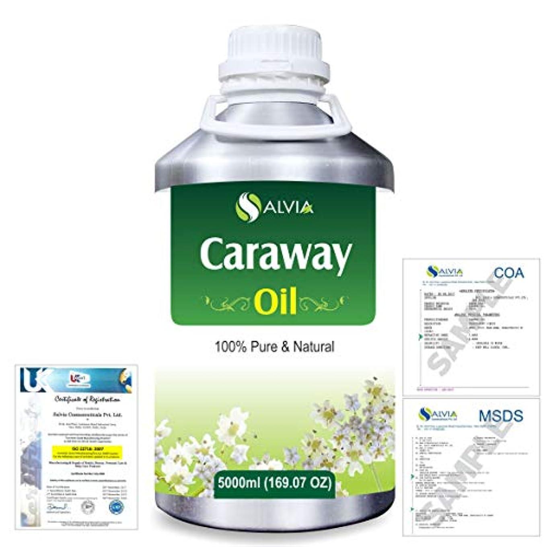 世界的に苦痛ルールCaraway (Carum carvi) 100% Natural Pure Essential Oil 5000ml/169fl.oz.