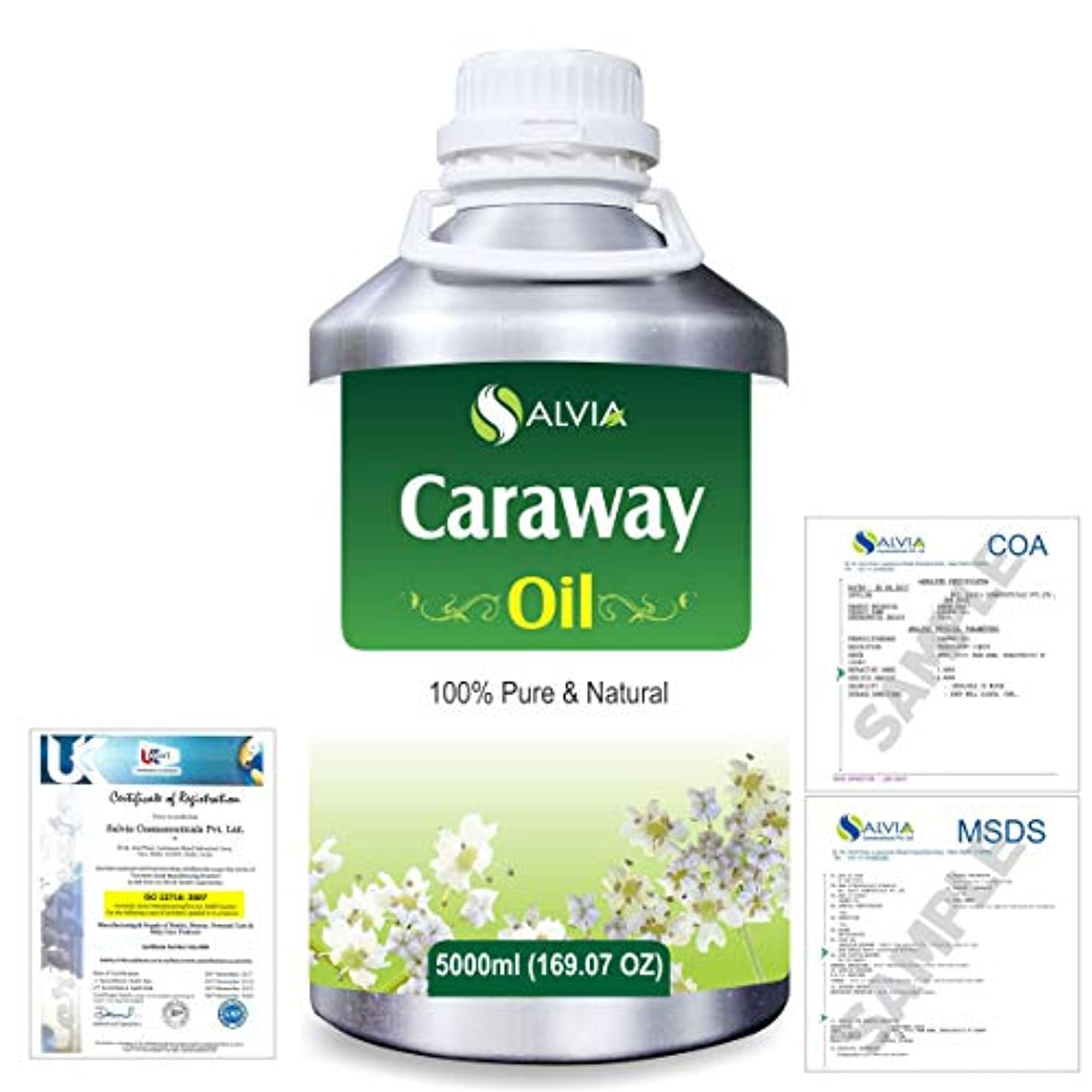ラップトップ第二松Caraway (Carum carvi) 100% Natural Pure Essential Oil 5000ml/169fl.oz.
