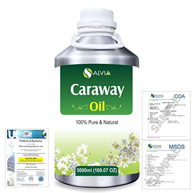 書き込み光のレルムCaraway (Carum carvi) 100% Natural Pure Essential Oil 5000ml/169fl.oz.
