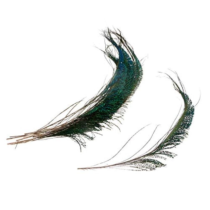 光沢のある泣き叫ぶサスペンドB Blesiya 10本 人工孔雀の羽 フライタイイング ルアー材料 手芸 DIY カード 衣装 装飾素材