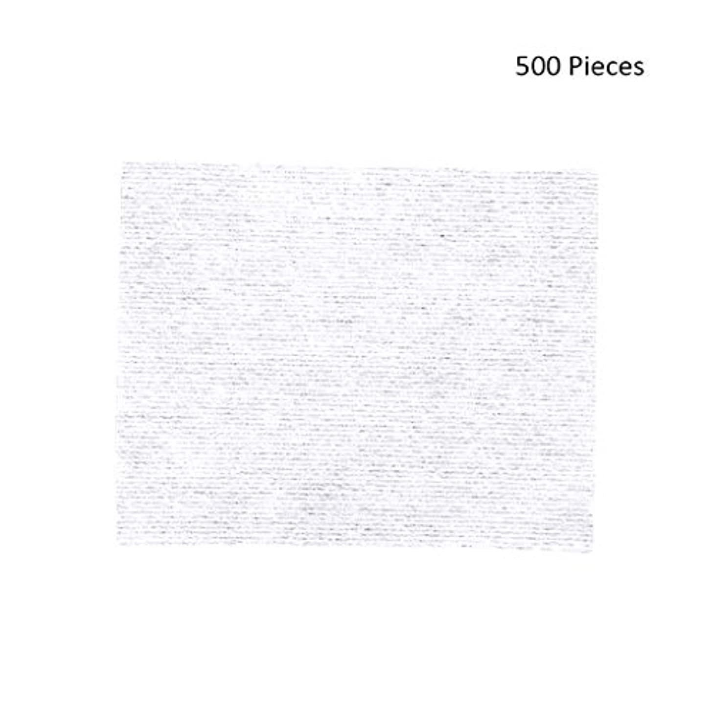 奪う無駄報告書クレンジングシート 500ピースフェイスメイクアップリムーバーメイクワイプコットンパッドメイクアップリムーバーパッドソフトパッド化粧品フェイスマスククレンジングケア 落ち水クレンジング シート モイスト (Color :...