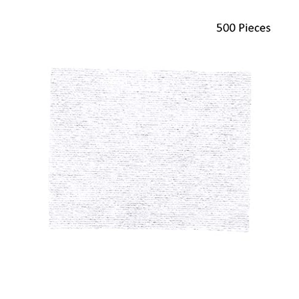 洪水海岸美容師クレンジングシート 500ピースフェイスメイクアップリムーバーメイクワイプコットンパッドメイクアップリムーバーパッドソフトパッド化粧品フェイスマスククレンジングケア 落ち水クレンジング シート モイスト (Color : White, サイズ : 6*5cm)