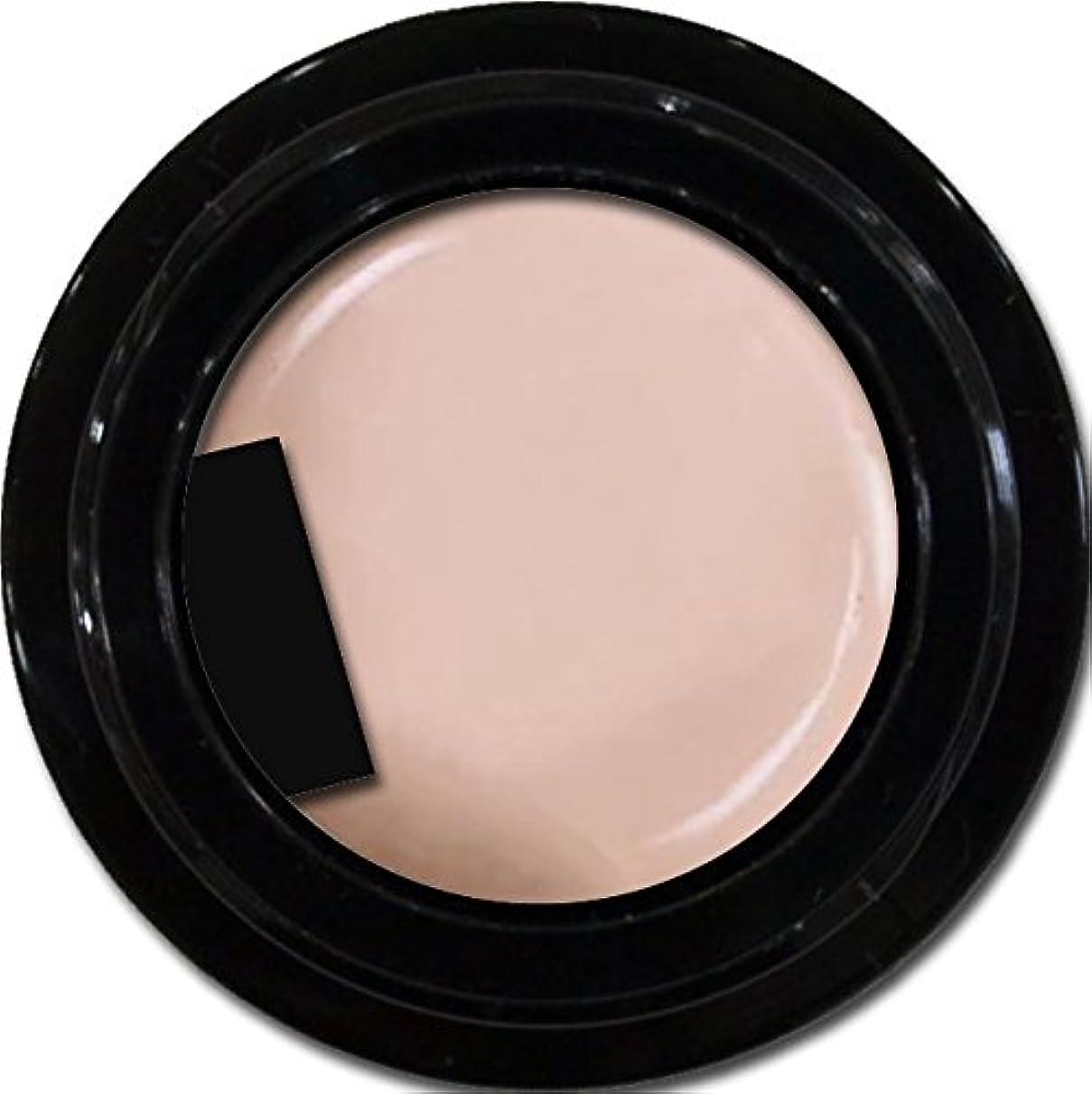 カラージェル enchant color gel M505 WitherWisteria 3g/ マットカラージェル M505 ウィザーウィステリア 3グラム