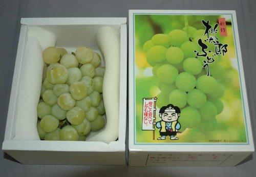 減農薬 岡山産 桃太郎 ぶどう 1.8kg 3〜5房 化粧箱入 贈答用