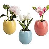 Ferrisland 3個セット 人工観葉植物 造花 枯れない花 マカロン色 かわいい 卵形 セラミックの植木鉢 室内 ホーム 庭 デコレーション 現代の美 フェイクグリーン おしゃれ ミニ キッチン 洗面所 玄関 窓 飾り 装飾