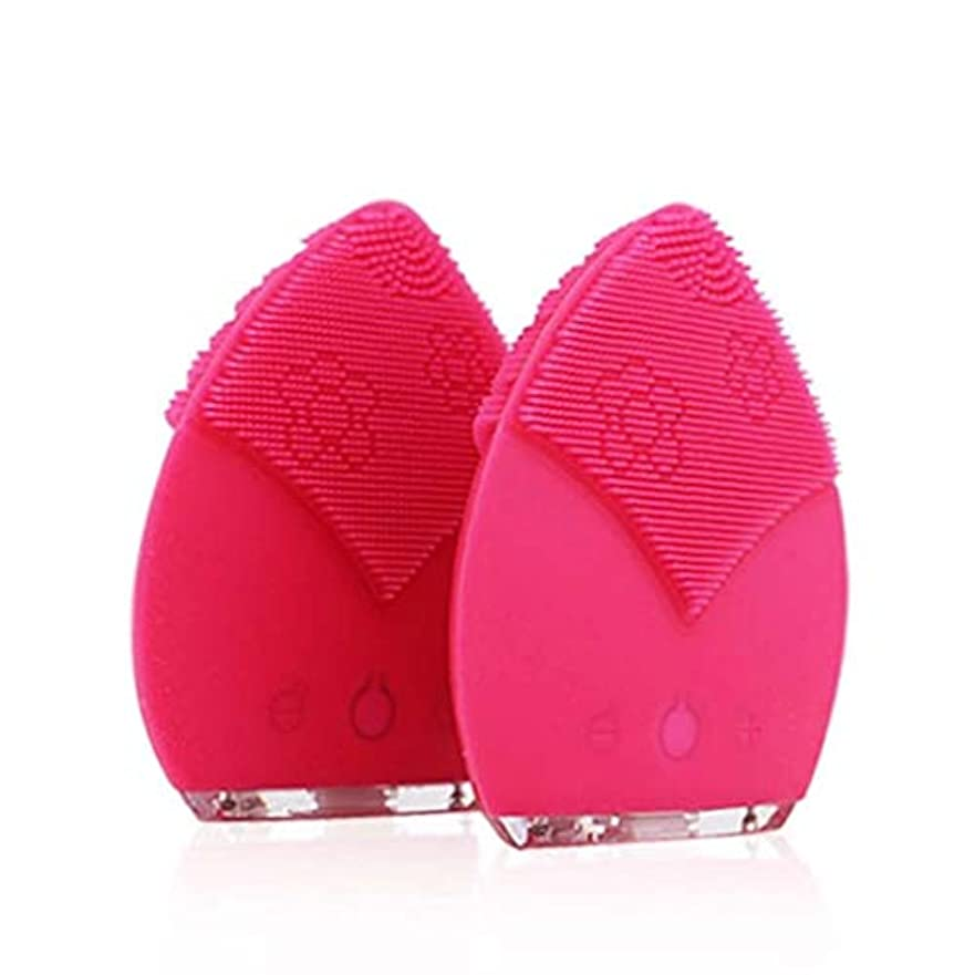 気難しい不快な認証クレンジングブラシ、IPX5は電気クレンジングブラシ、深い皮の清潔になるための顔のマッサージャーを防水します