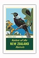 ニュージーランドの森林 - Karaka ベリー - Tui 鳥 - ビンテージな世界旅行のポスター によって作成された マーカス・キング c.1950 - プレミアム290gsmジークレーアートプリント - 61cm x 91cm