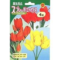 秋植え球根 チューリップ スプレー咲ミックス (239562)