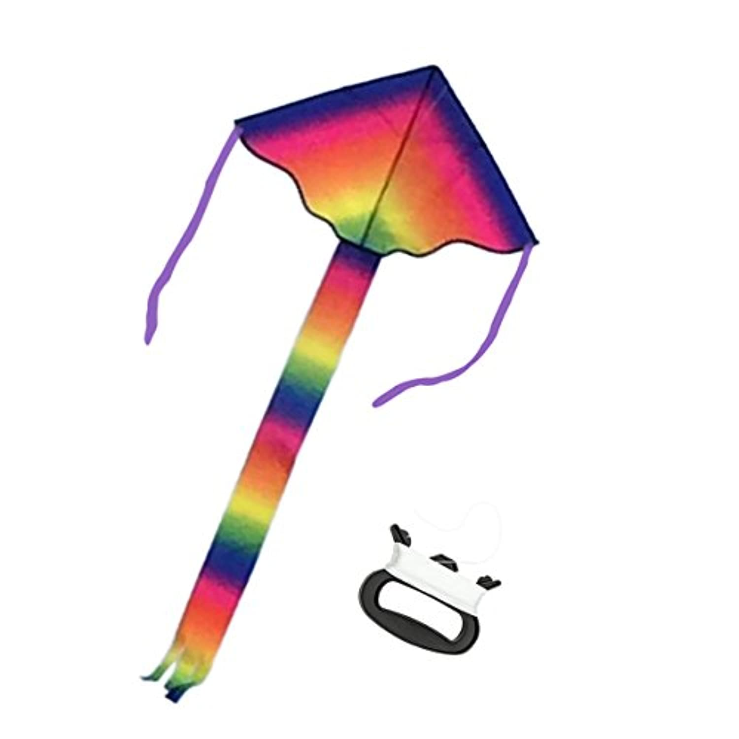 Wings Rainbow Flying Delta Kite、簡単flyer- Great初心者Kite ( Includes Kite Line )