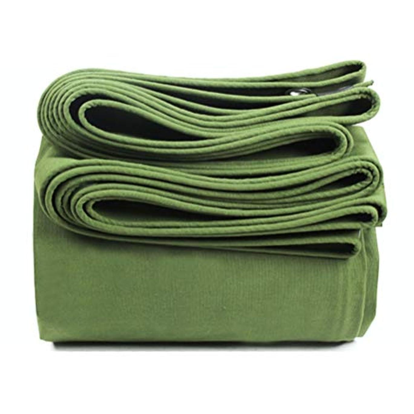正直パキスタン人心から防水シートリノリウム Green Economy Tarpaulin - 防水屋外釣りキャンプグランドシートカバー ZHANGQIANG (Color : A, Size : 3mx4m)