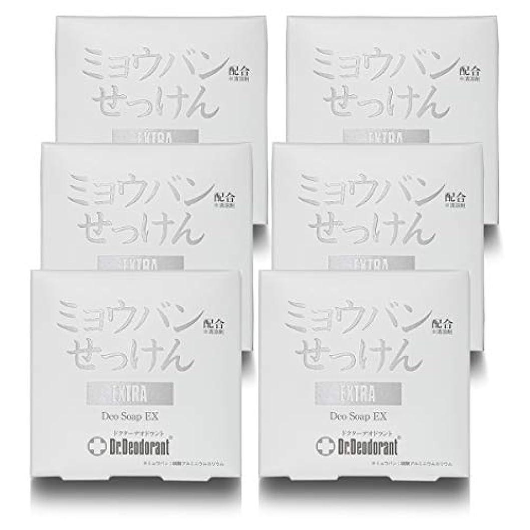 大きいキャビンメタルラインドクターデオドラント 薬用ミョウバンせっけんEX (6個セット)