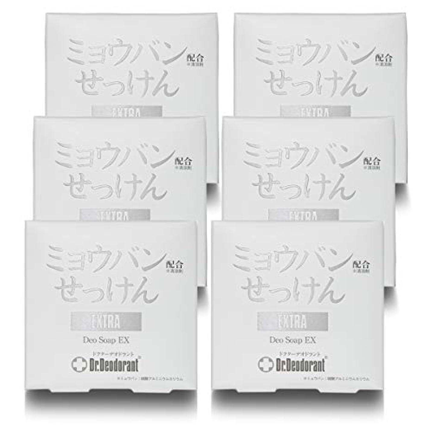 極めて重要な気づくなるつぼみドクターデオドラント 薬用ミョウバンせっけんEX (6個セット)