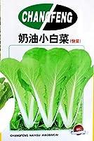 8グラムキャベツ15日、高速 - 野菜栽培の鉢植え盆栽家庭菜園