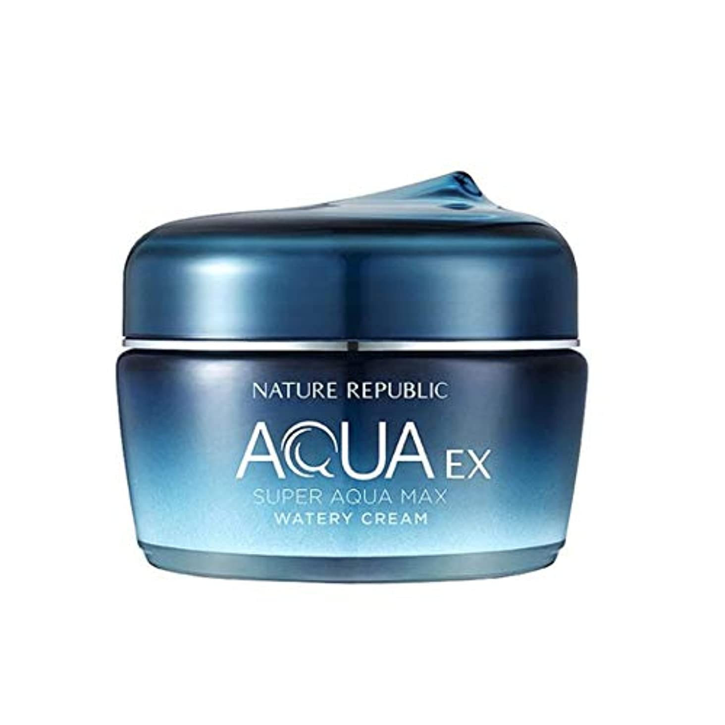 腐敗した地味な破裂ネイチャーリパブリックスーパーアクアマックスEX水分クリーム80ml韓国コスメ、Nature Republic Super Aqua Max EX Watery Cream 80ml Korean Cosmetics [並行輸入品]