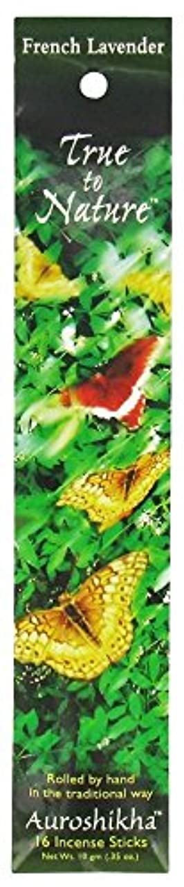 生態学よろめく上向きAuroshikha - 性質の香のフランスラベンダーに調整しなさい - 16棒