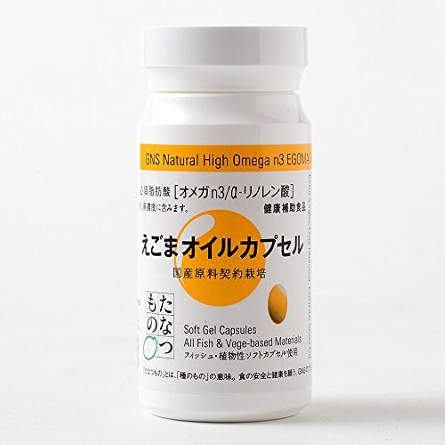 クレーター操作喉頭えごまオイルカプセル 120粒 オメガ3必須脂肪酸/αリノレン酸