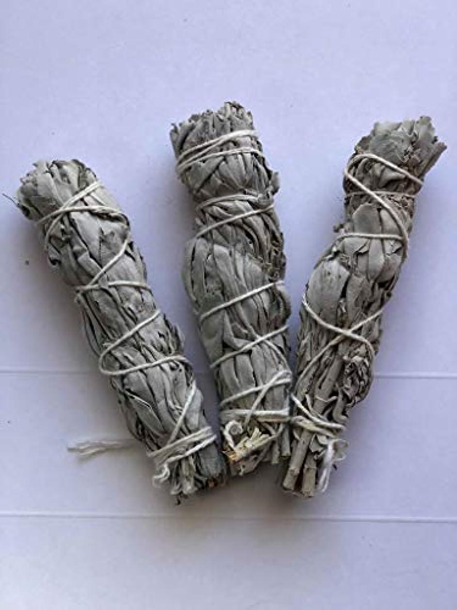 ベルト忌避剤カルシウム2 xホワイトセージSmudge Stick 3 - Pack