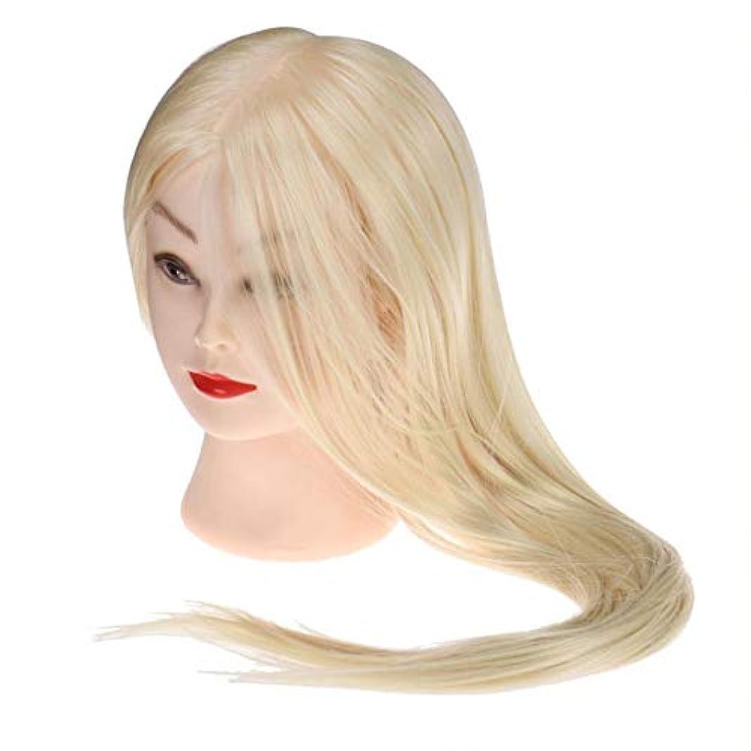 考え干し草症候群サロン散髪練習ヘッドモデルメイク学校編組髪開発学習モデルヘッドヘアストレートロングかつら