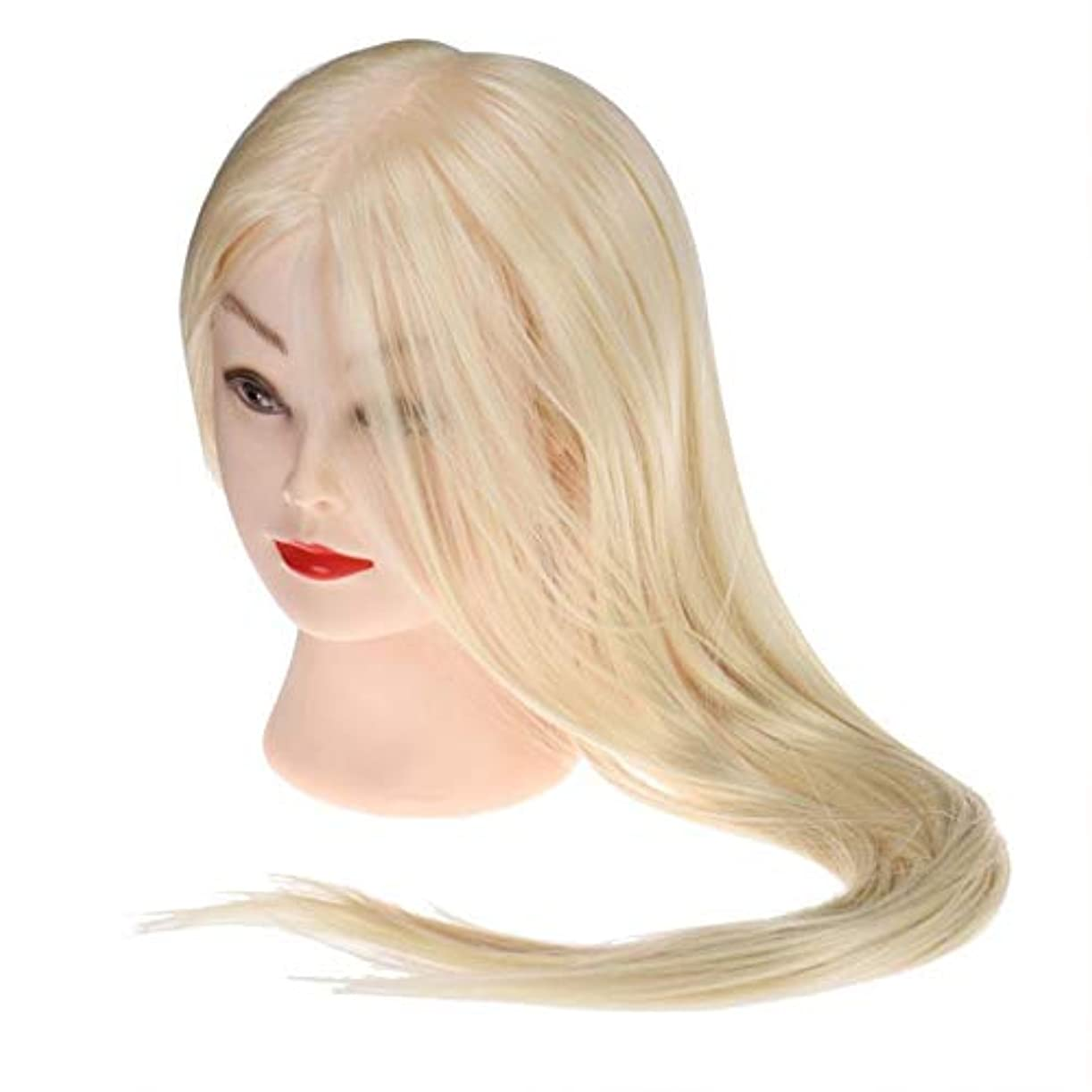 浪費めまいが離れたサロン散髪練習ヘッドモデルメイク学校編組髪開発学習モデルヘッドヘアストレートロングかつら